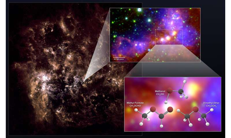 Stellar embryos in nearby dwarf galaxy contain surprisingly complex organic molecules Stellarembry