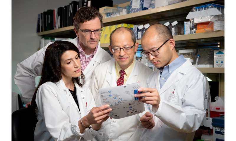 St. Jude researchers solve a central mystery of a baffling high-risk leukemia