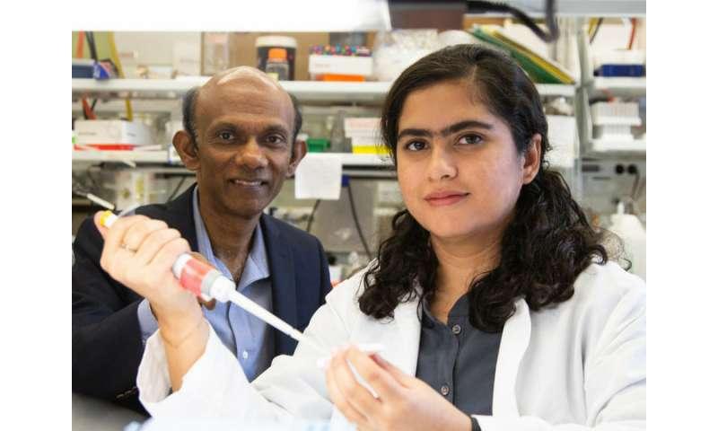Stool proteins to predict inflammatory bowel disease