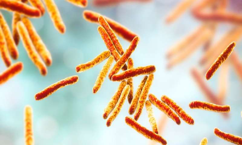 Structural study of antibiotic opens the way for new TB treatments