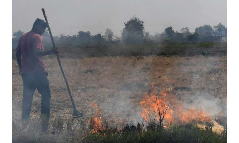 Stubble burning by farmers in breadbasket states surrounding Delhi contribute to lethal smog  which makes Indian capital the wor