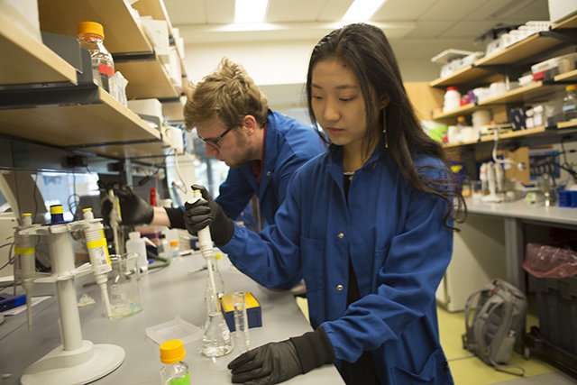Students genetically engineer E. coli for skin ailment treatments