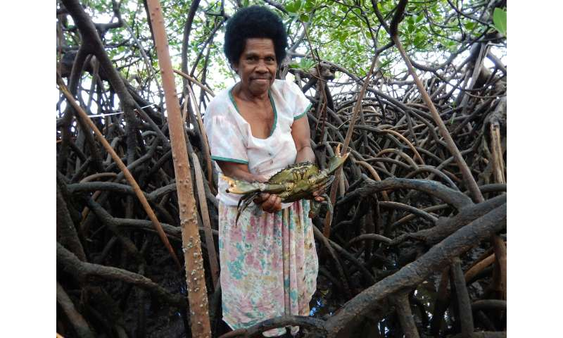 Study finds Tropical Cyclone Winston damaged fisheries as well as homes in Fiji