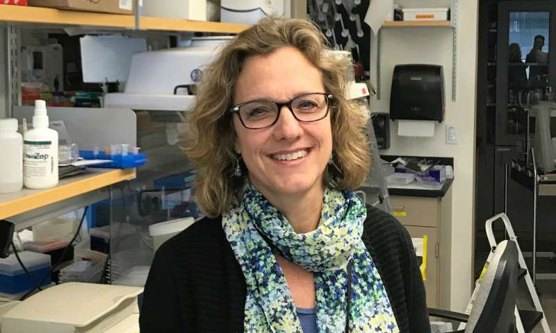 Study hints at new target to improve immune therapy in triple-negative breast cancer