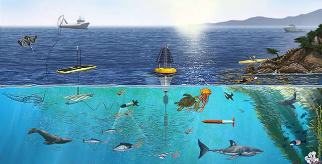 Studying marine biodiversity from pole to pole