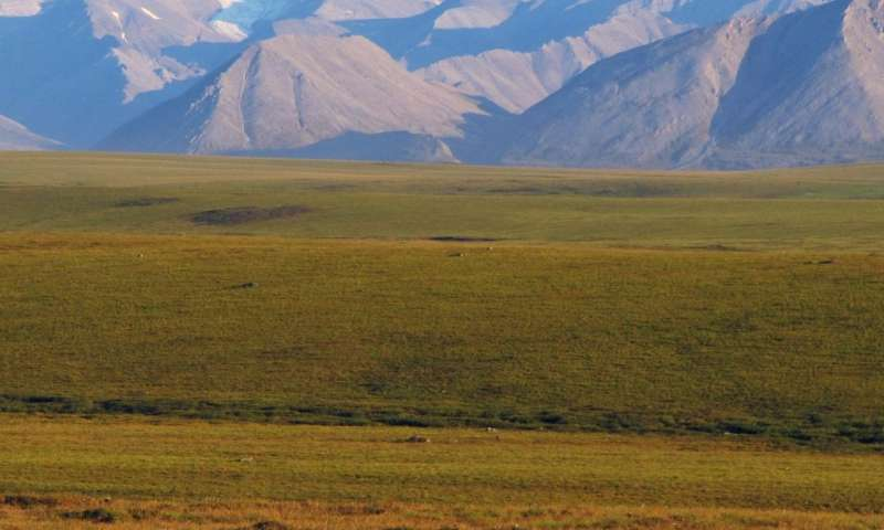 Study links climate policy, carbon emissions from permafrost