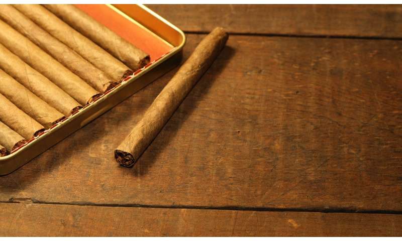 Study shows cigarillo flavors enhanced by high-intensity sweeteners