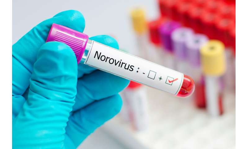 Summer norovirus outbreak could lead to a winter crisis