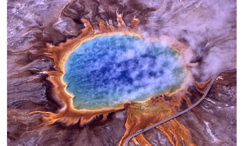 Surviving one of Earth's most extreme environments