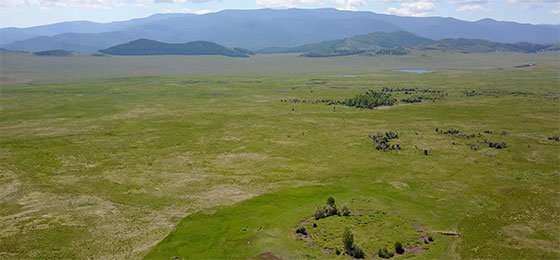 Swiss archaeologist discovers the earliest tomb of a Scythian prince