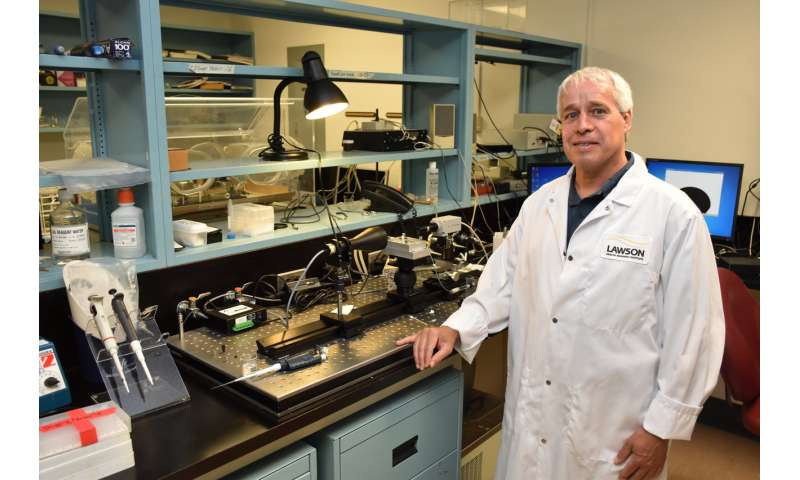 Synthetic surfactant could ease breathing for patients with lung disease and injury