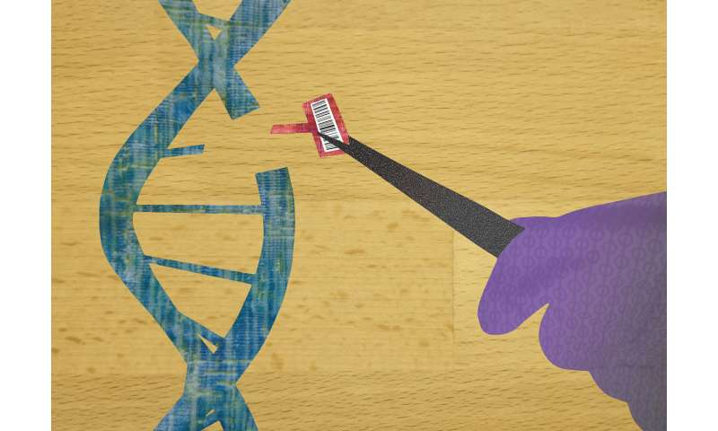 Taking CRISPR from clipping scissors to word processor
