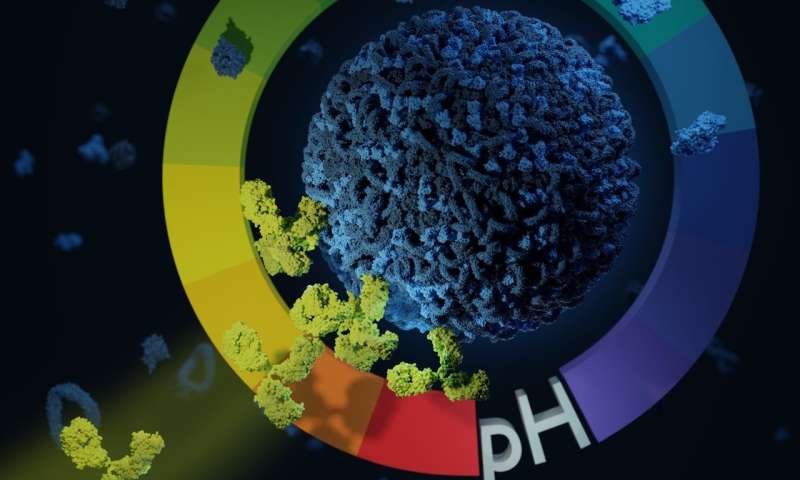 Targeting headaches and tumors with nano-submarines