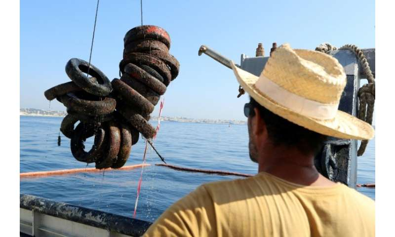 Ten thousand tyres are set to be lifted out of the sea by the divers and boat crew over the next few weeks, with the remaining 1