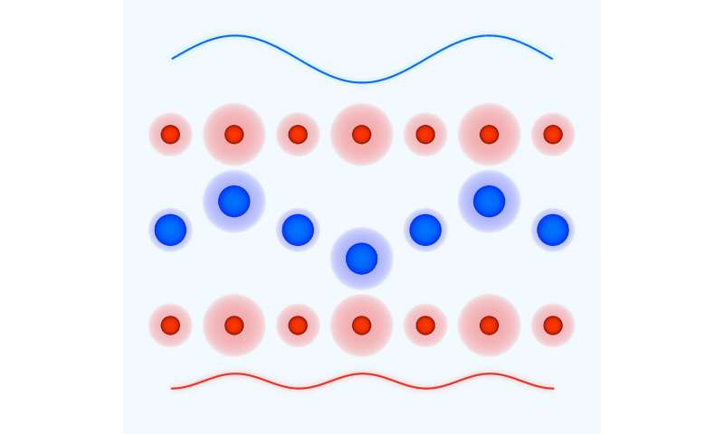 **Terahertz laser pulses amplify optical phonons in solids