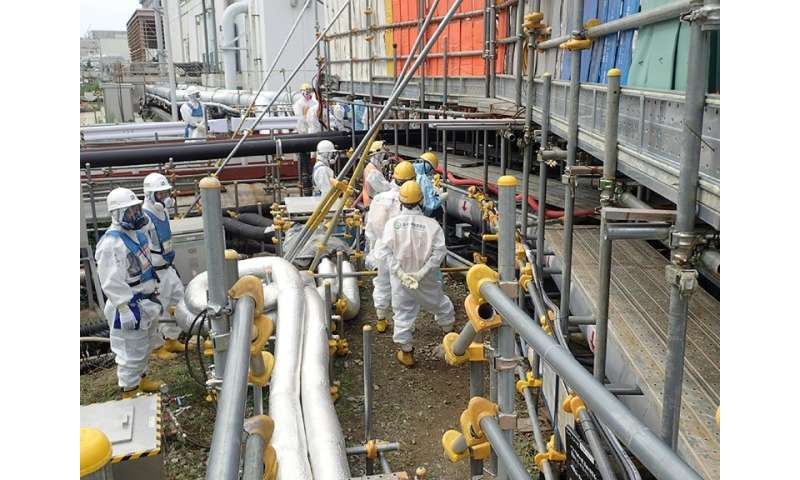 The Fukushima disaster has depressed demand for fuel for other nuclear power plants, but Japan's plutonium stockpile keeps growi