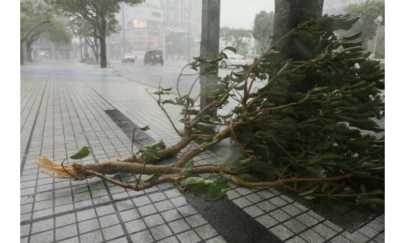 The gusts damaged trees on Okinawa island