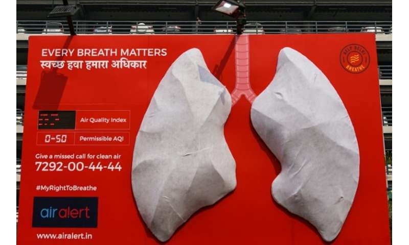 The 'lungs' were white-coloured when they were installed on November 3 outside a hospital in the city