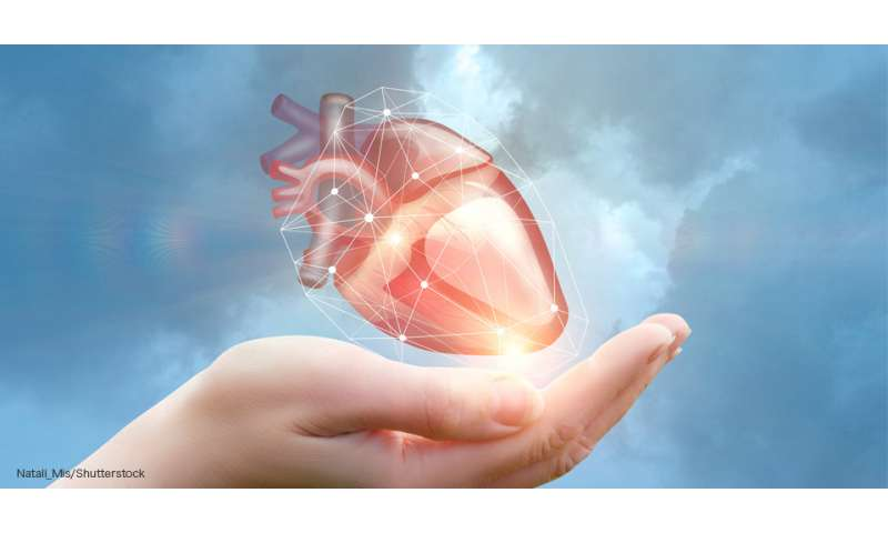 The molecules that energize babies' hearts