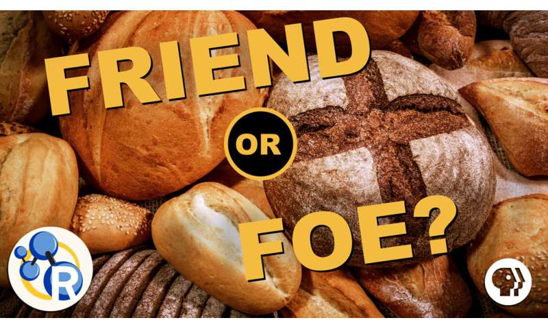 The only video you'll ever need to watch about gluten (video)