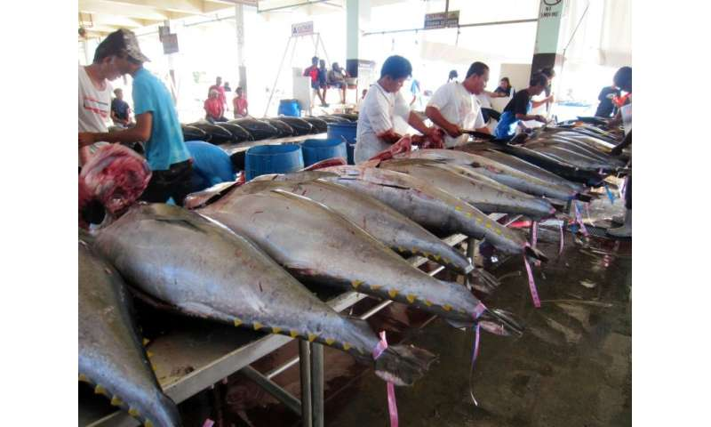 The Pacific accounts for almost 60 percent of the global tuna catch, worth about $6.0 billion annually