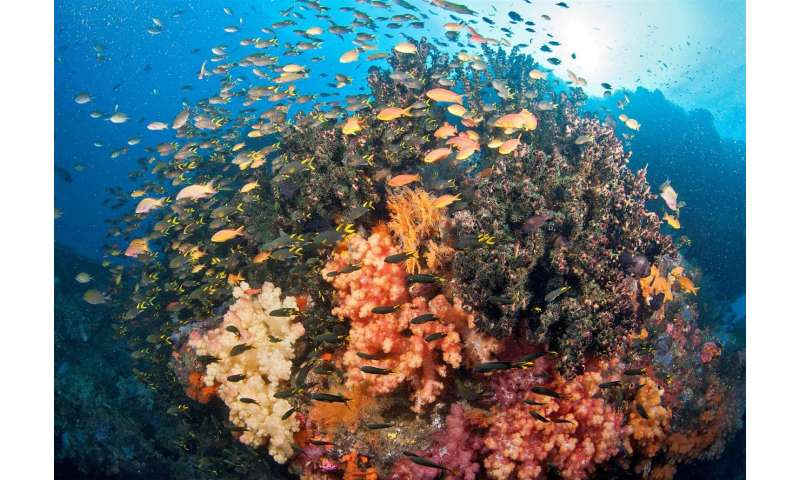 There is no 'one-size fits all approach' to ocean protection
