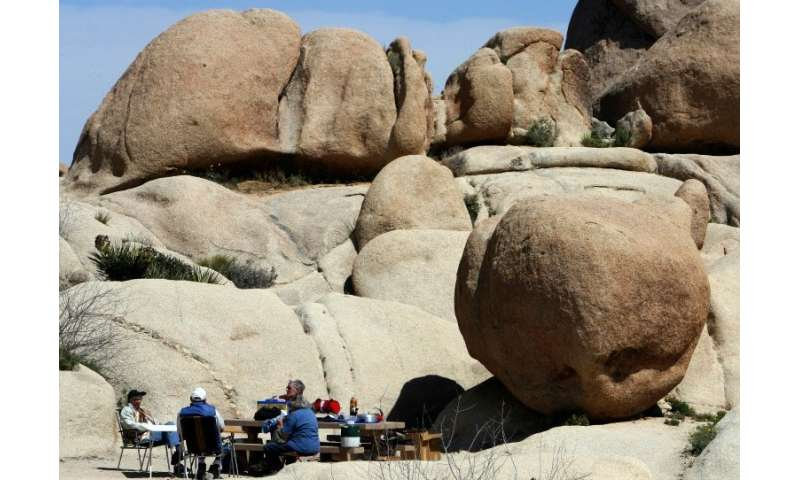 The time between Christmas and New Year's is among Joshua Tree park's busiest