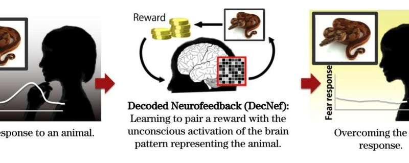 Towards an unconscious neural reinforcement intervention for common fears