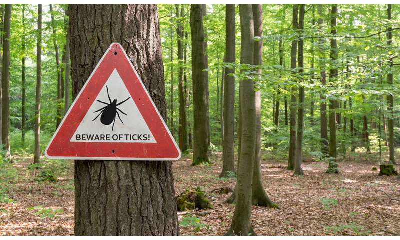Treating Lyme disease in 2018—advances and misconceptions