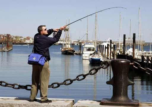 Tumor-free flounder: Study underscores Boston Harbor rebirth