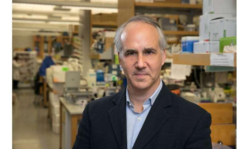 UCLA study sheds light on genetic overlap between major psychiatric disorders