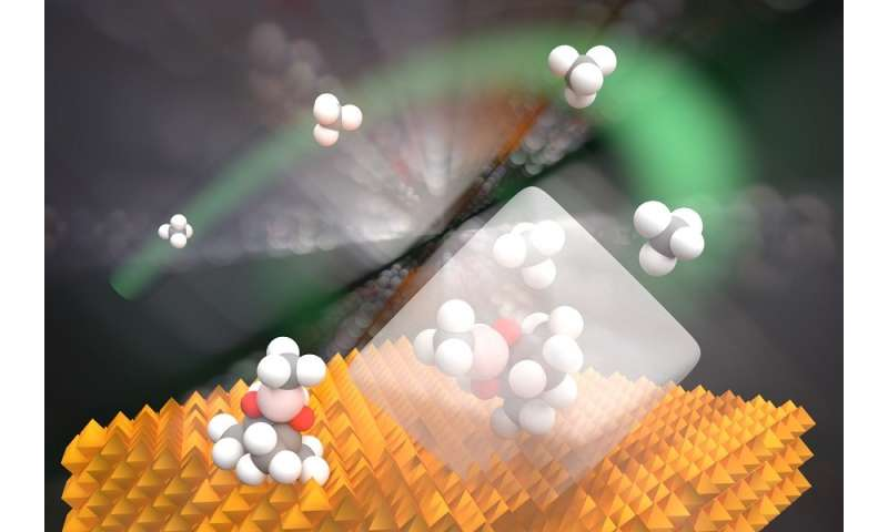 Uncovering a missing link from methane to methanol