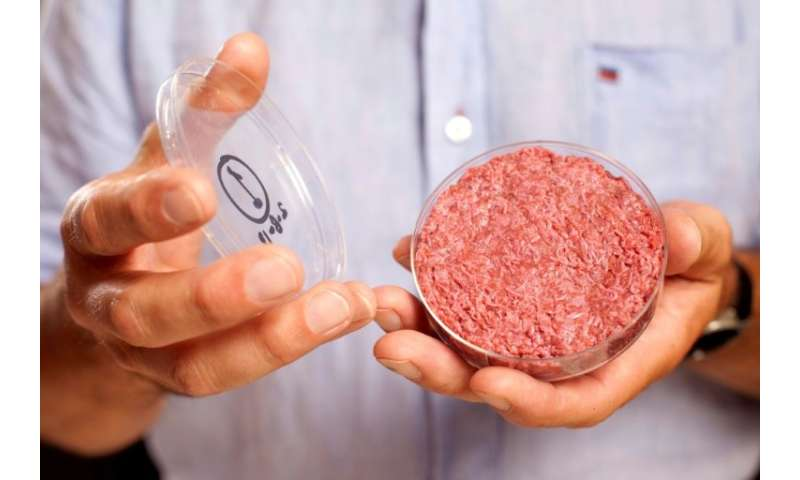 "US farmers and beef producers have joined forces to convince the government to prevent the ""meat"" label to be used on"