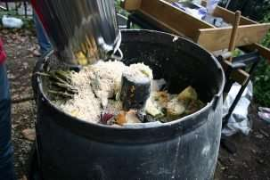 Using the food wasted in New York City