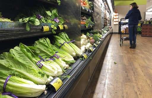 US traces lettuce outbreak to at least 1 California farm