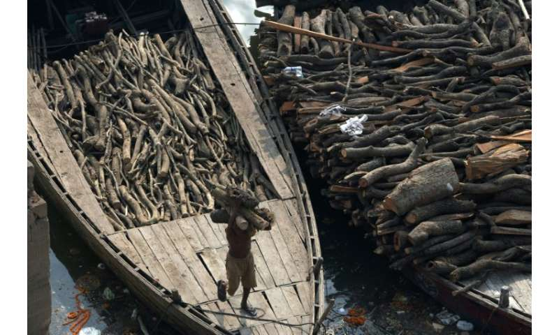 Varanasi burns through as much as 80 tonnes of wood in cremations every day.