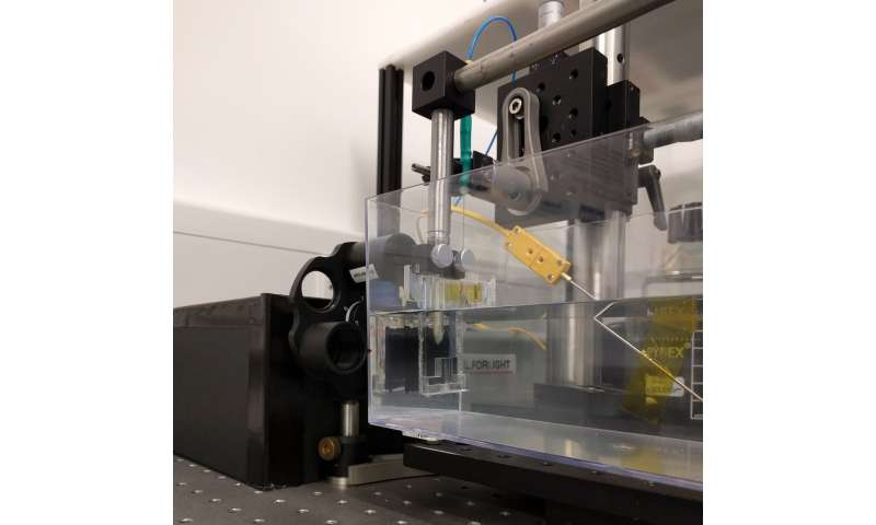 Versatile ultrasound system could transform how doctors use medical imaging