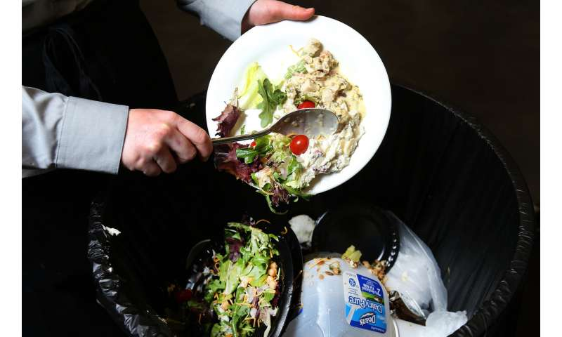 Wasting food may be safe, reasonable decision for some, study says