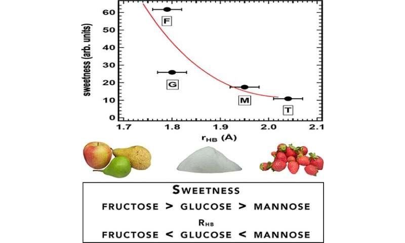 Water may be key to understanding sweetness