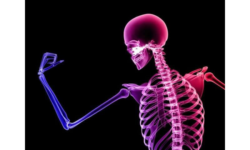 We have weaker bones than our hunter-gatherer ancestors – this is what you can do about it