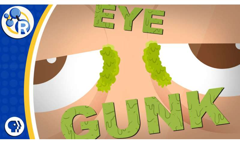 What are eye crusties made of? (video)