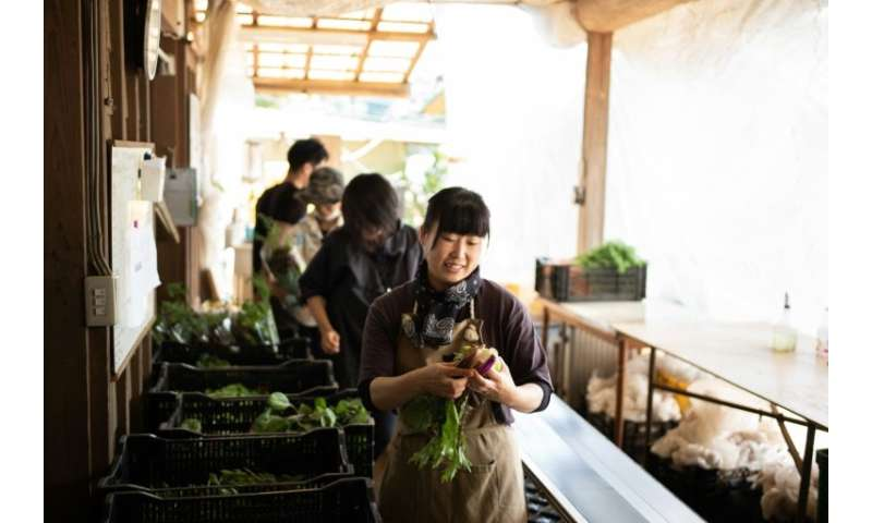 While a craze for healthy eating has fuelled lucrative sales around the world, the market for 'bio' or organic food in Japan is