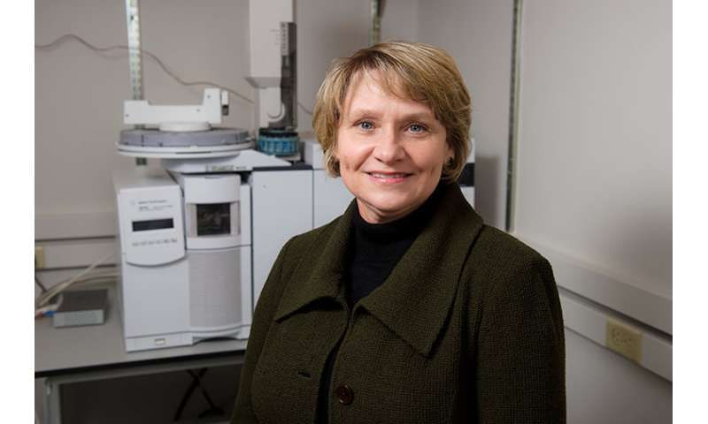 While men lose more weight on low-carb diets, women show improved artery flexibility