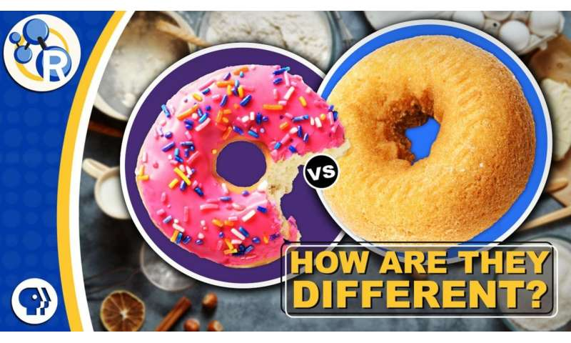 Why cake donuts and yeast donuts are so different (video)