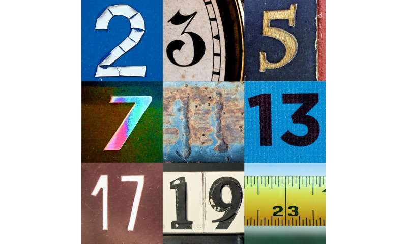 Why prime numbers still fascinate mathematicians, 2,300 years later