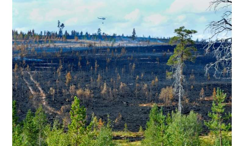 Wildfires have laid waste to at least 25,000 hectares (62,000 acres) in Sweden including 13,000 hectares in the central Karbole