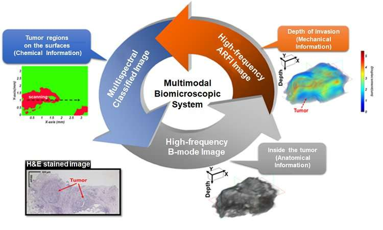 World first multimodal biomicroscopic system enhances the accuracy of cancer treatment