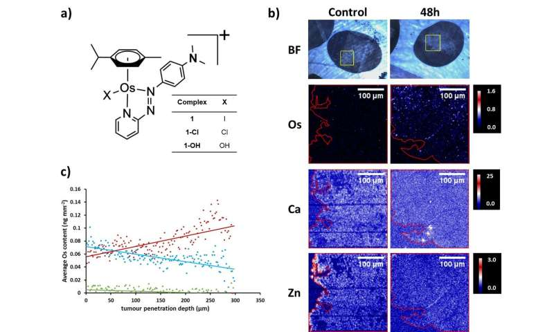 X-ray fluorescence mapping to measure tumour penetration by a novel anticancer agent