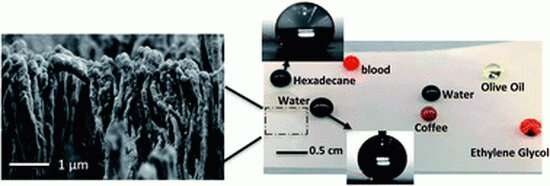 A forest of nano-mushroom structures keep this plastic clean and stain-free
