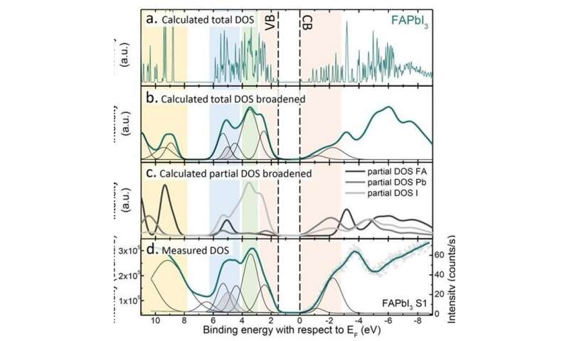 A complete set of energy level positions of all primary metal-halide perovskites